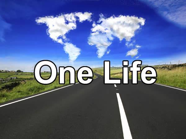 One life скачать торрент